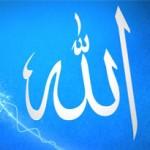 El Ne Der Değil Allah Ne Der ?