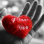 Hayatın Anlamı: Sevgi