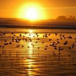 Güneşin Doğuşunu Seyretmek