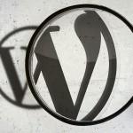 Wordpress Arama Sonuçlarını İyileştirme 2