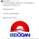 Erdoğan Logosunun Anlamı